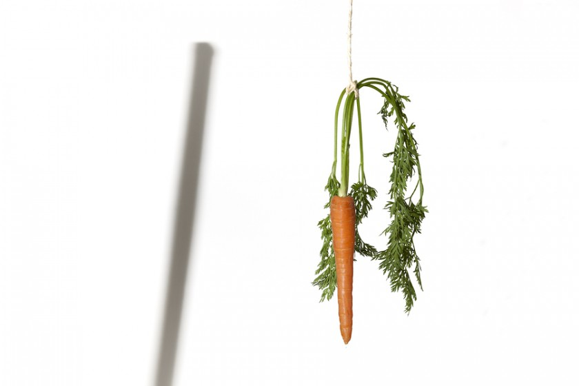 managing absenteeism carrots or stick How to overcome absenteeism background color to note that while employer wants to be effective in managing absenteeism the sticks or carrots.